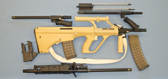 Steyr AUG Weapons System Pre-1986 Dealer Sales Sample For Sale ...
